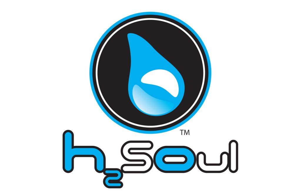Web-Portfolio-collateral-h2soul